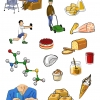 illustrations_book